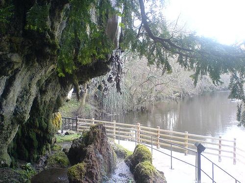 Mother Shipton's Park
